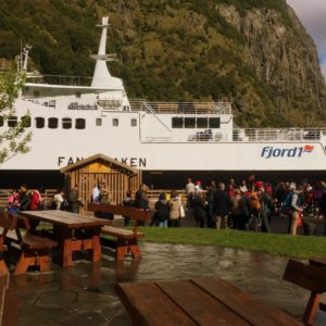Gudvangen Fjord Cruise