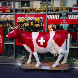 The Great Swiss Cows in Switzerland