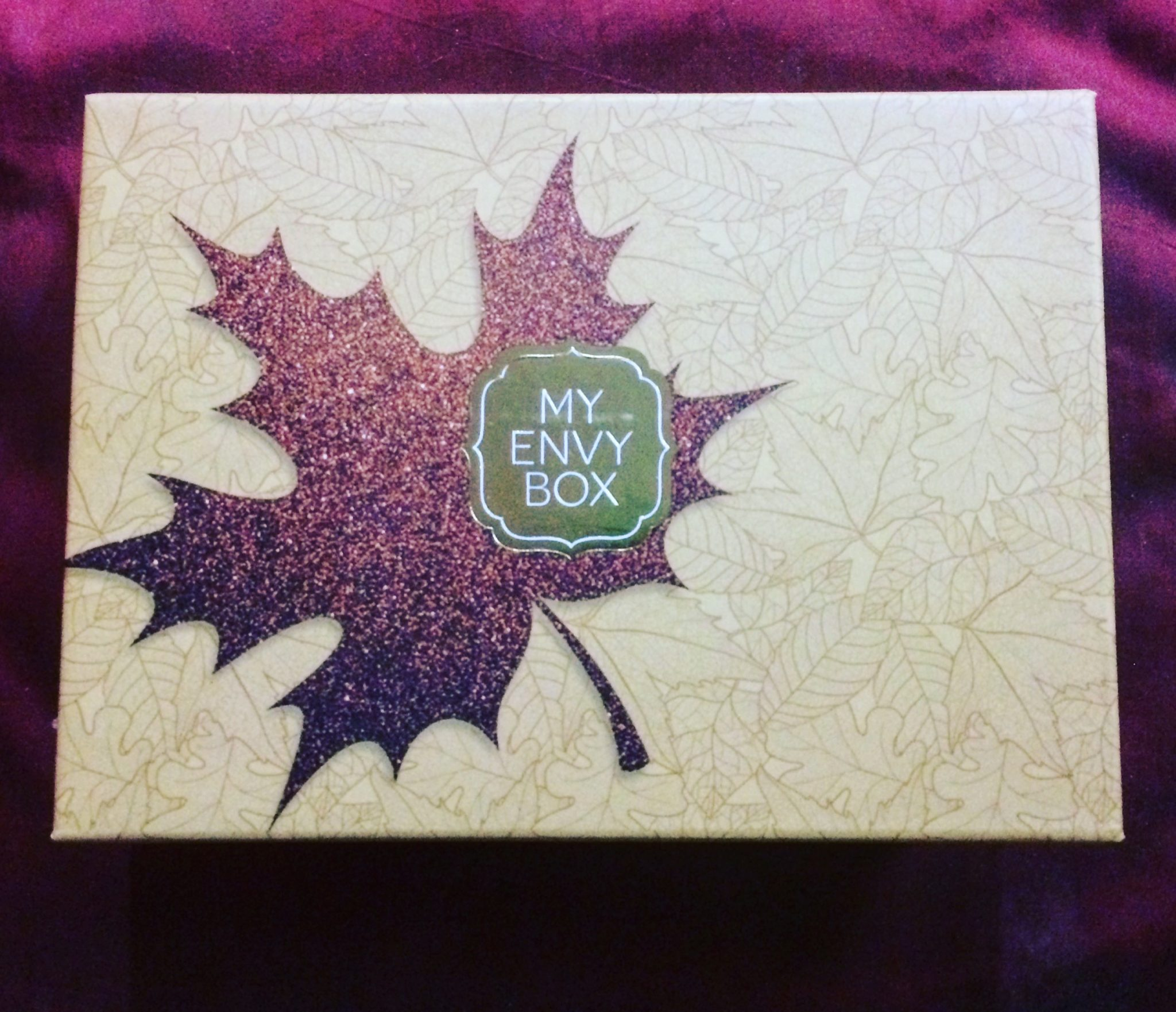 Unboxing my envy box november 2017 edition krazy butterfly unboxing my envy box november 2017 edition malvernweather Choice Image