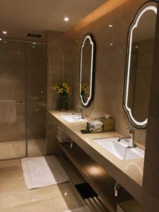 Indore Marriott Twin Basins