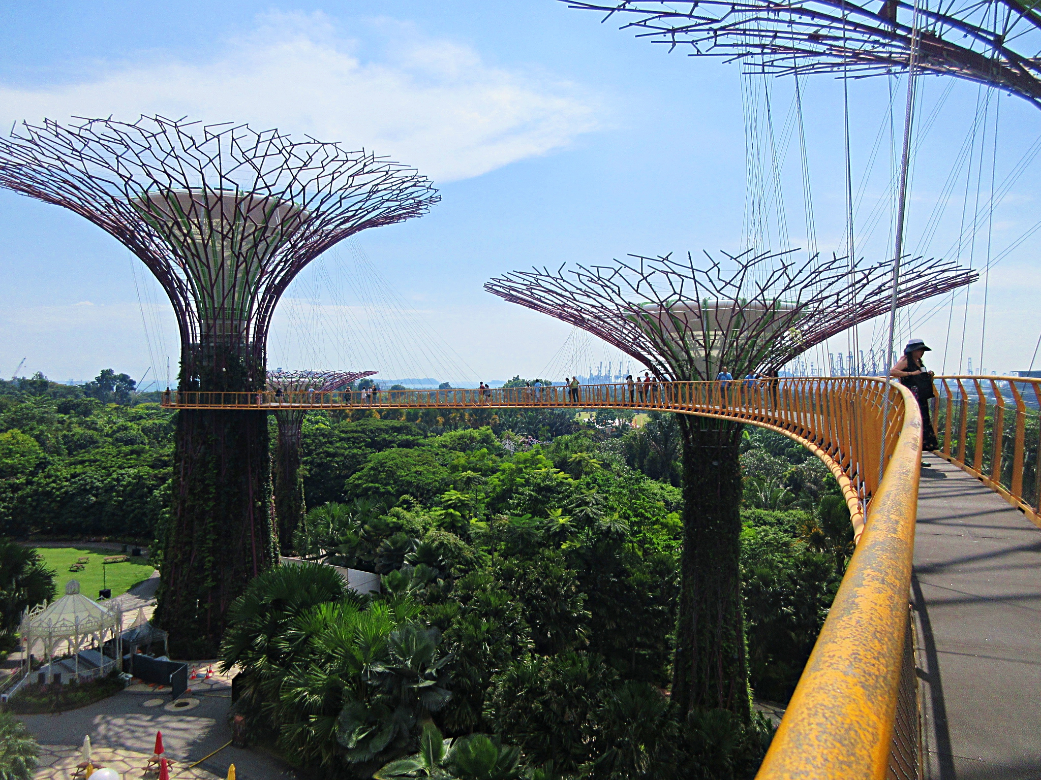 Gardens By The Bay Skywalk Bridge