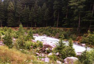 Kullu River