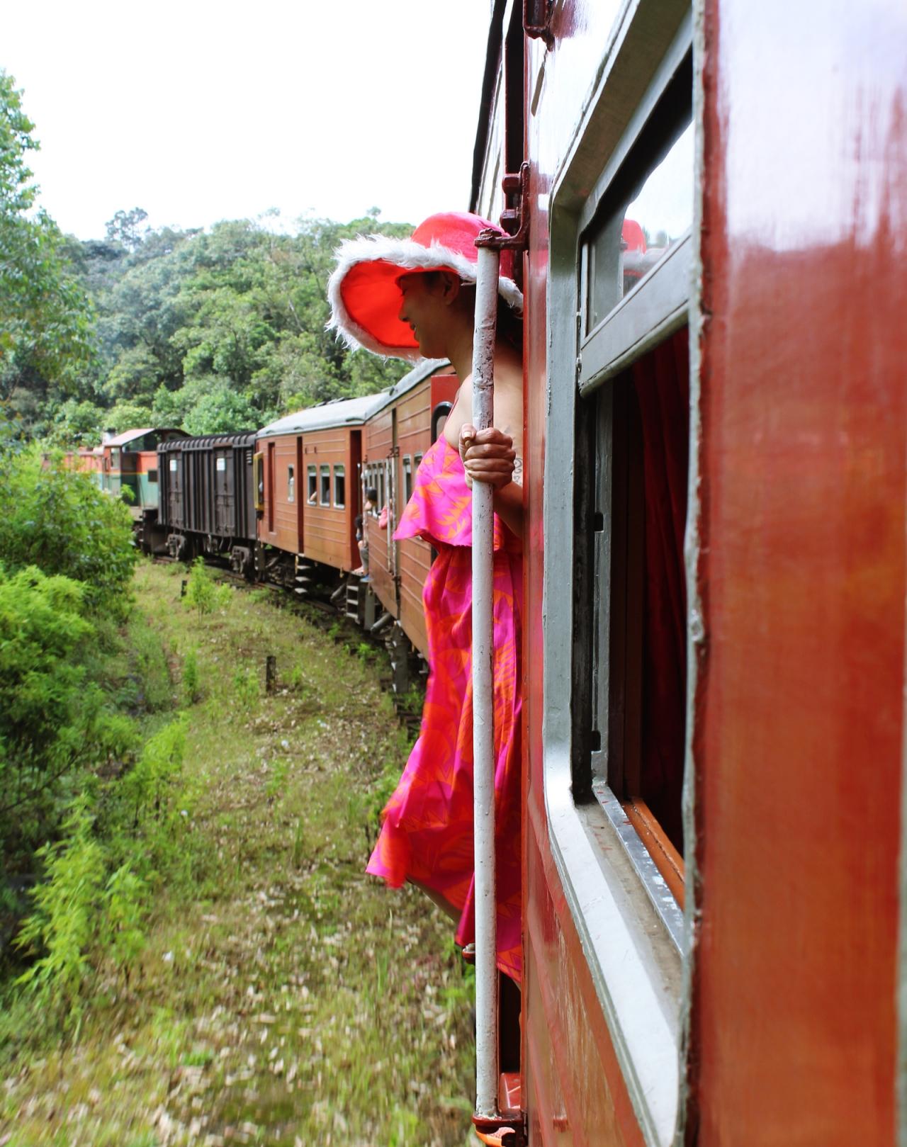 Nanu Oya Train Ride