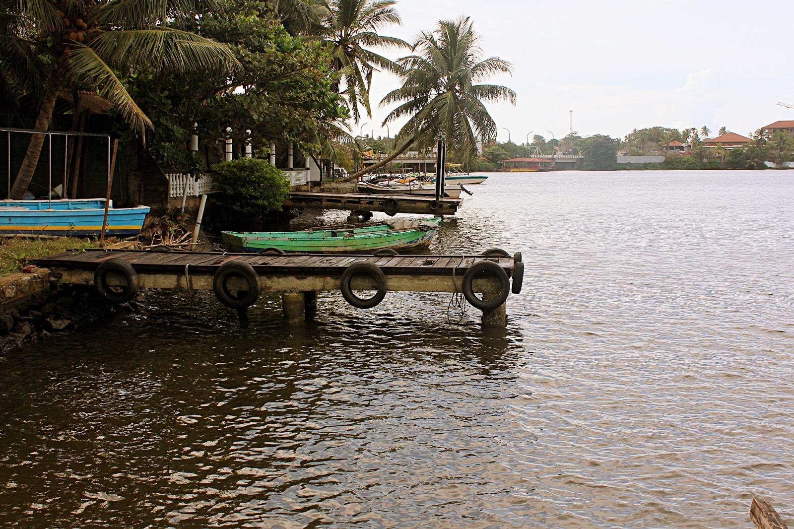 Bentota River Boat Safari