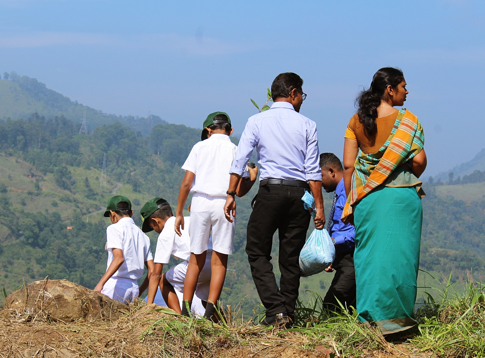 Tree plantation in Badulla
