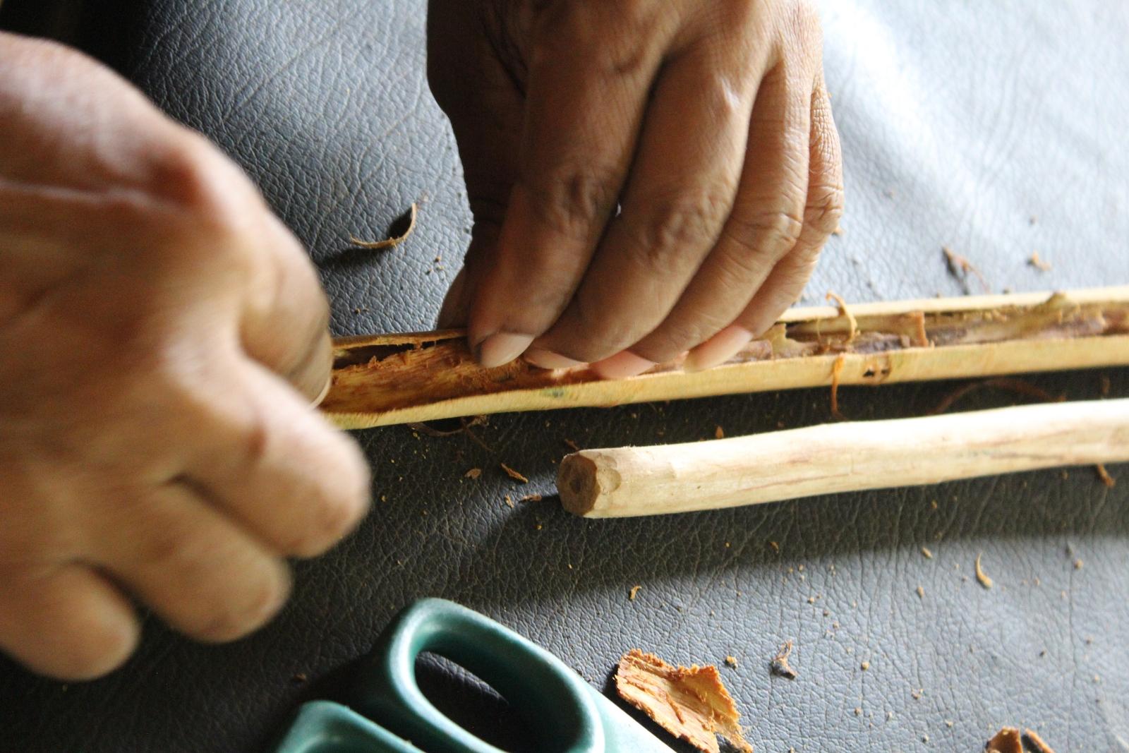 Ayagama Ceylon Cinnamon