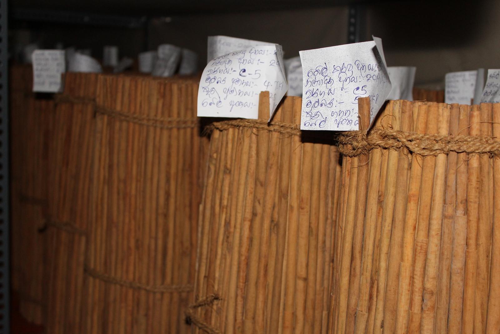 BrownGold Cinnamon Sri Lanka