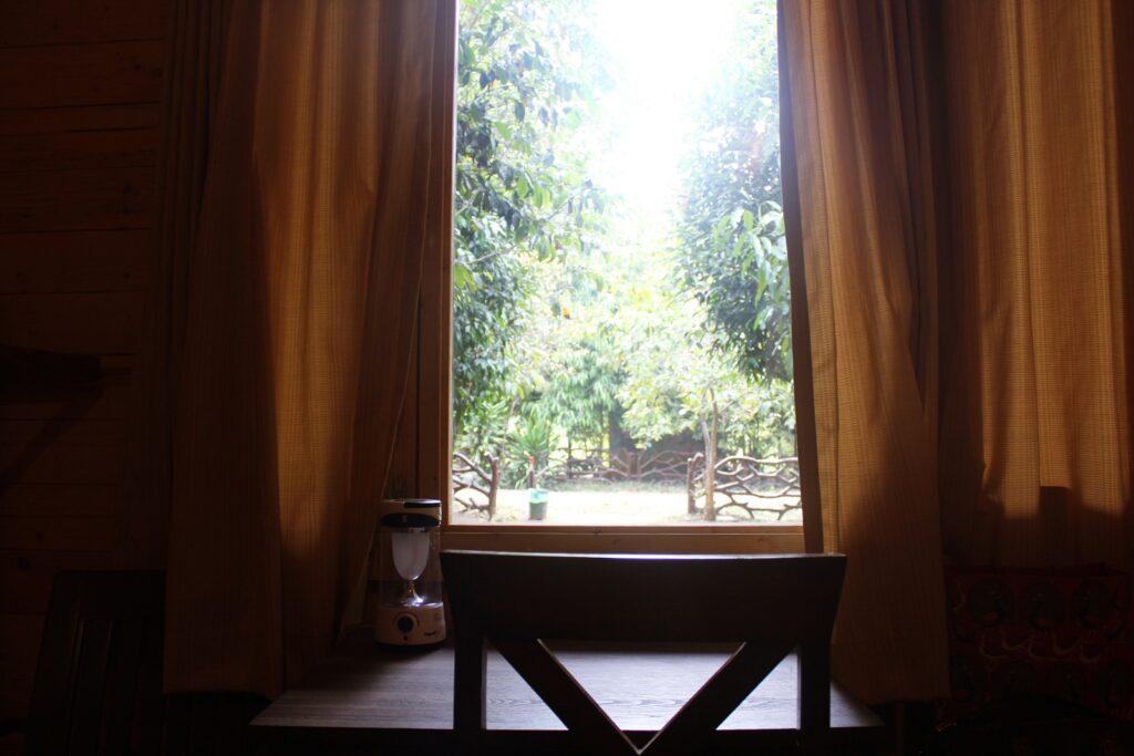 BNC Cottage 1 window